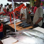 A fish market in the Solomon Islands, near Papua New Guinea.