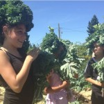 Kids get creative with kale in Tacoma, Washington.