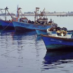 Fishing boats in coastal Peru.
