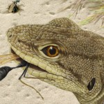 A drawing of lizards eating wasps.