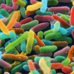 tie-dye-microbes