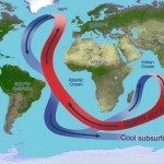 Depiction of Atlantic circulation with red arrows pointing north and blue arrows pointing south.