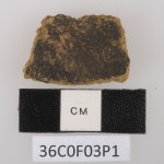 A potsherd artifact found at the Pulau Ay archaeological site. It was one of several pottery pieces containing traces of foods, including the earliest-known use of nutmeg. Photo of small piece of pottery.