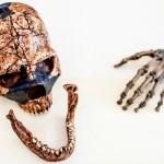 assorted Neandertal bones