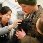 Both pets and people receive care at One Health Clinic.