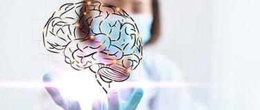 研究人员拿着人脑的轮廓