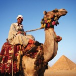 Man on Camel