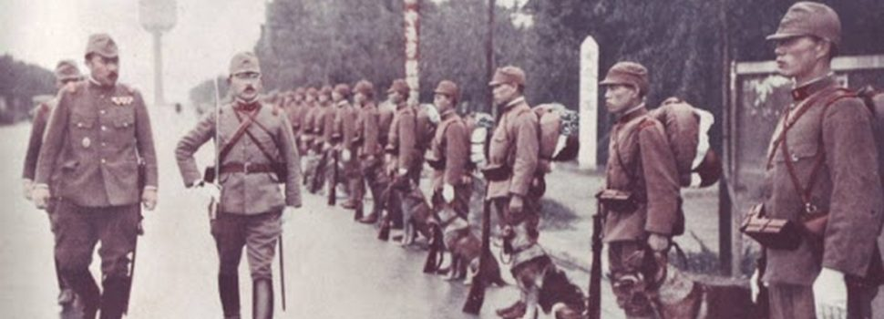 The Canine Heroes of the Imperial Japanese Army