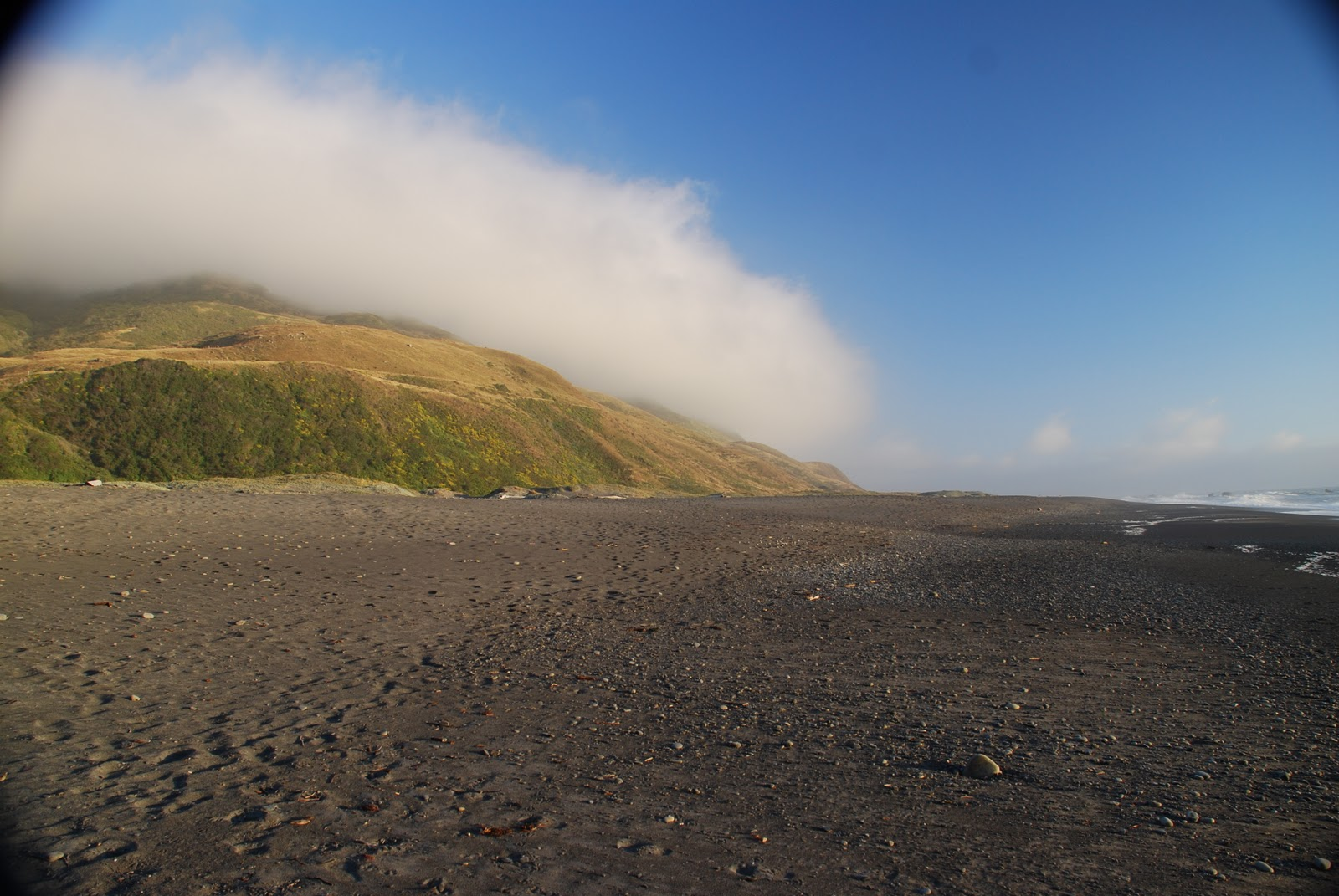 "Mattole Beach, Humboldt County, CaliforniaCredit: ""stepleton"""