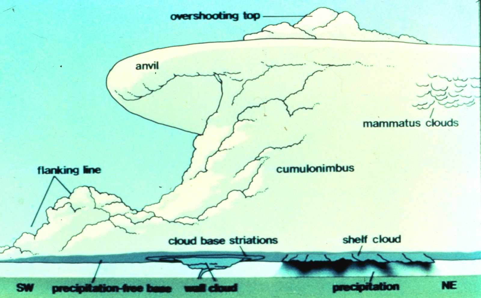 Features of a supercell. Note: This is a typical northwestward view in North America. Uploaded 10 Aug. 2005 by Demonburrito. Retrieved from Wikimedia Commons. Author: NOAA.