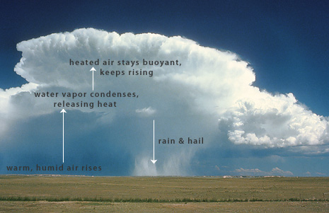 Photo of a thunderstorm with labeled parts.Credit: UCAR