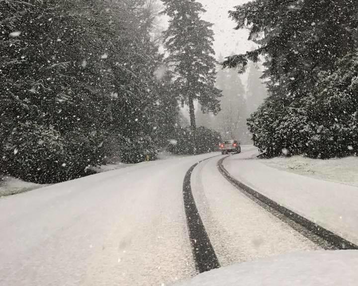 A Snowy Road near Bear Creek