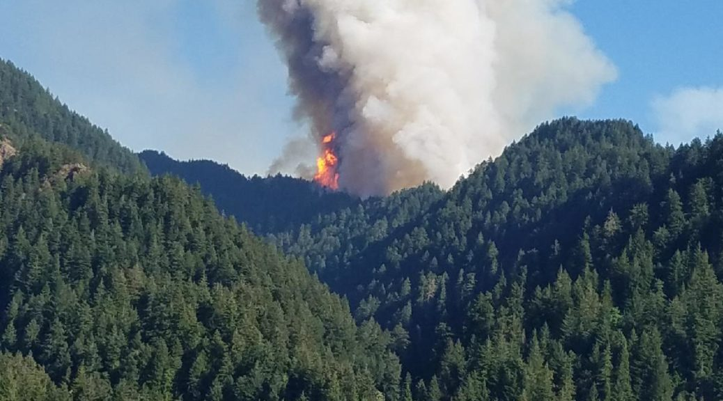 Eagle Creek Fire on the afternoon of Saturday, September 2nd. The fire was started by fireworks that afternoon and grew extremely quickly, becoming a 3,000 acre blaze by Sunday morning.