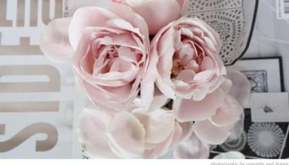 Rosas de color claro