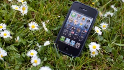 Teléfono celular tirado en el pasto