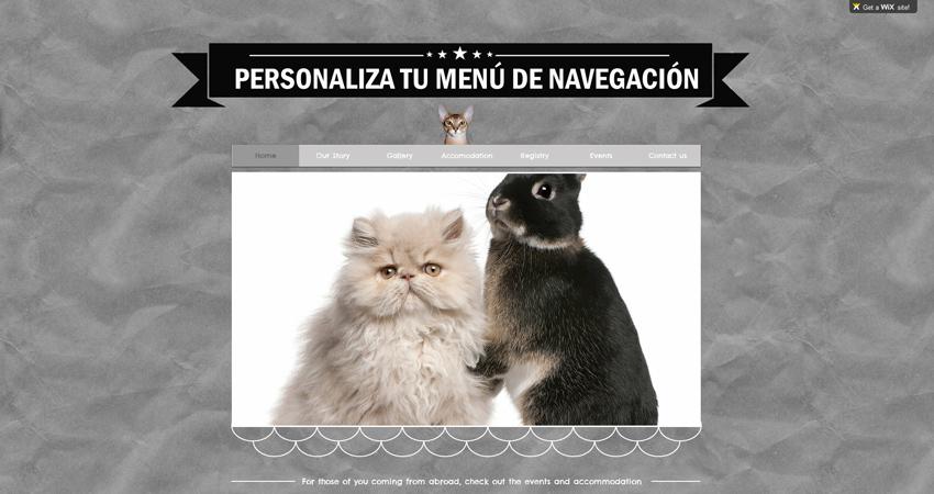 Sitio Web con Gatos