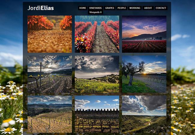 Sitio Web de Jordi Elias