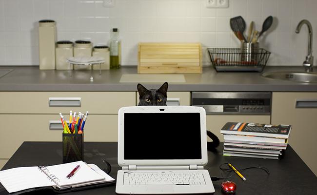 Dedica un espacio para tu trabajo