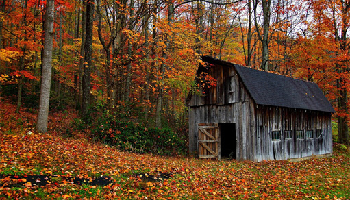 Get Fired Up for Fall with Epic Foliage Photos