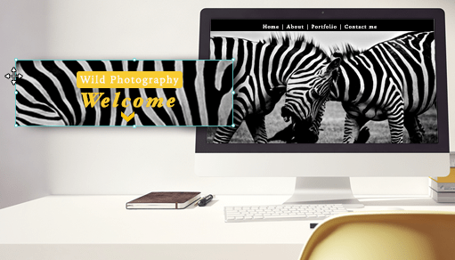 Turn Your Website into a Visual Sensation with Full-Width Strips