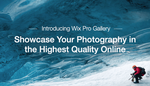 New! Wix Pro Gallery - The Most Powerful Media Gallery on the Web
