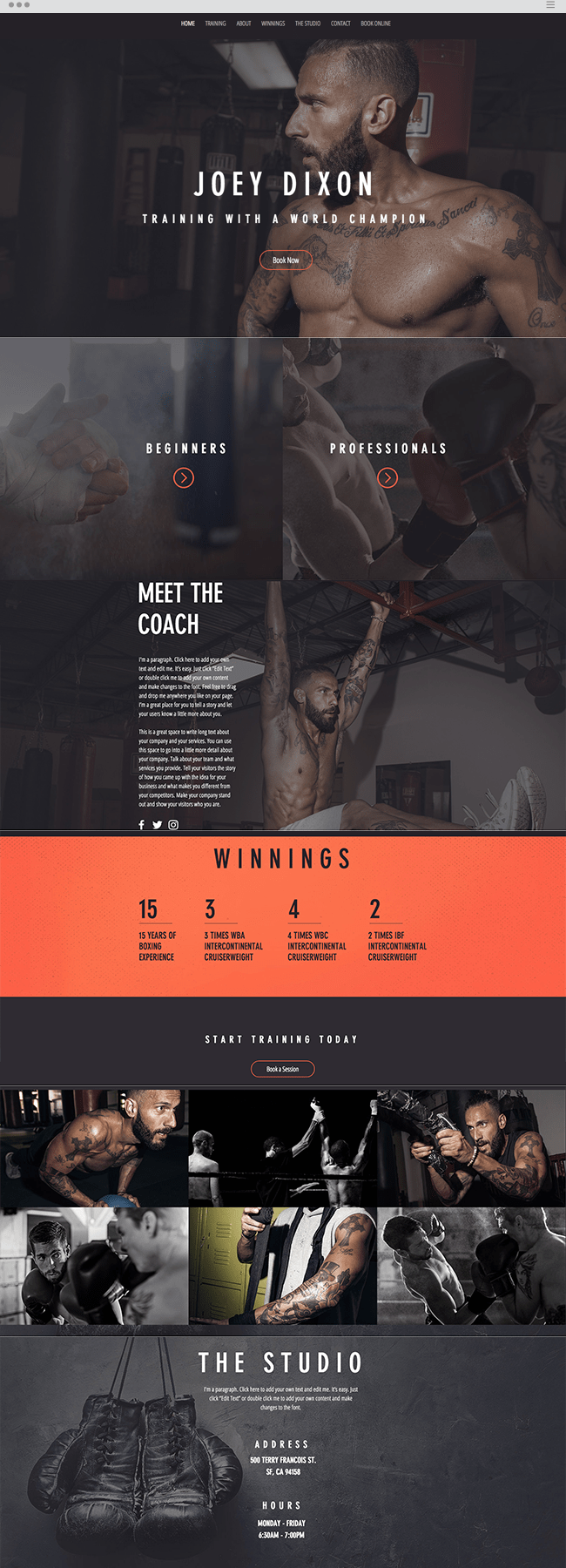 The Boxer Website Template WIX