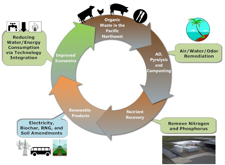 Cycle diagram depicting wastes; AD, pyrolysis & composting; nutrient recovery; renewable products; and improved economics