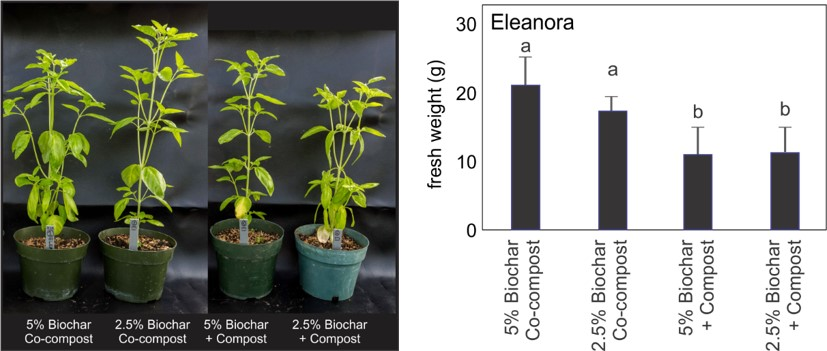 biochar co-compost significantly different from others