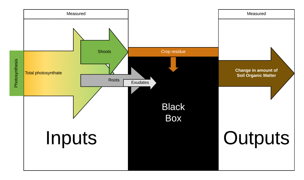 Schematic showing measurable inputs and outputs w/ a black box between them.