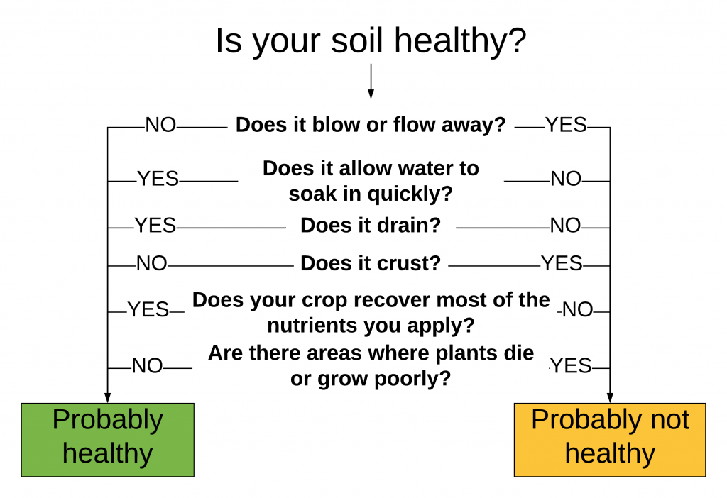Is your soil healthy? Does it blow or flow away? Does it allow water to soak in quickly? Does it drain? Does it crust? Does your crop recover most of the nutrients you apply? Are there areas where plants die or grow poorly?