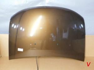 Dacia Duster Капот HG81101224