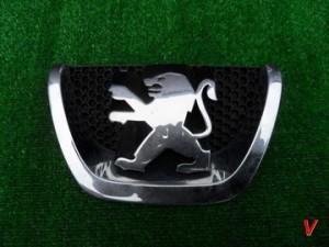Peugeot 207 Решетка радиатора HG72273709
