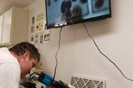 Alan Barton fights to save shellfish