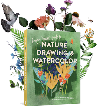 Book Launch: Peggy Dean\'s Guide to Nature Drawing & Watercolor
