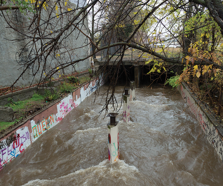 The Rising Tide: Springfield's Stormwater Crisis