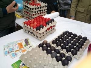 Palio dell'uovo Tredozio