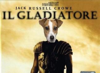 Jack Russell Crowe