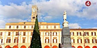 Albero piazza saffi