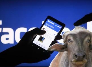 Facebook-e bufale