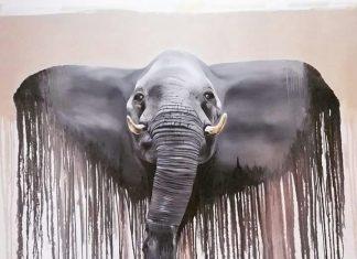 Elefante - 2015, olio su tela, cm 160 x 200