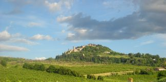 PANORAMA-bertinoro