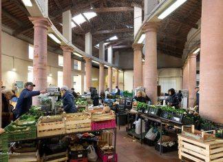 mercato-delle-erbe
