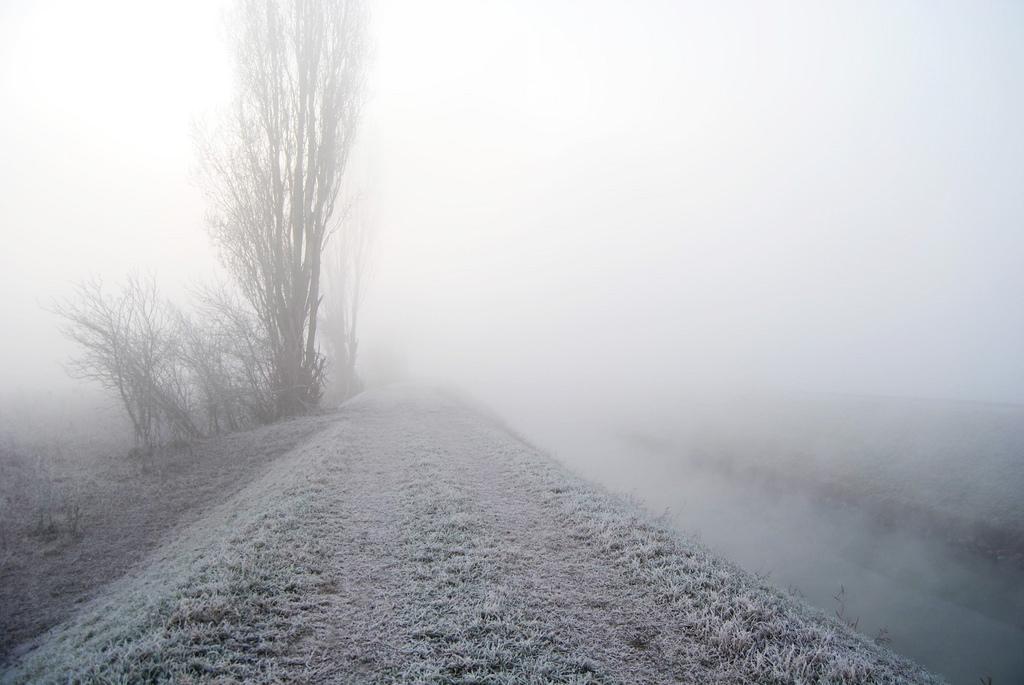 nebbia ghiacciata