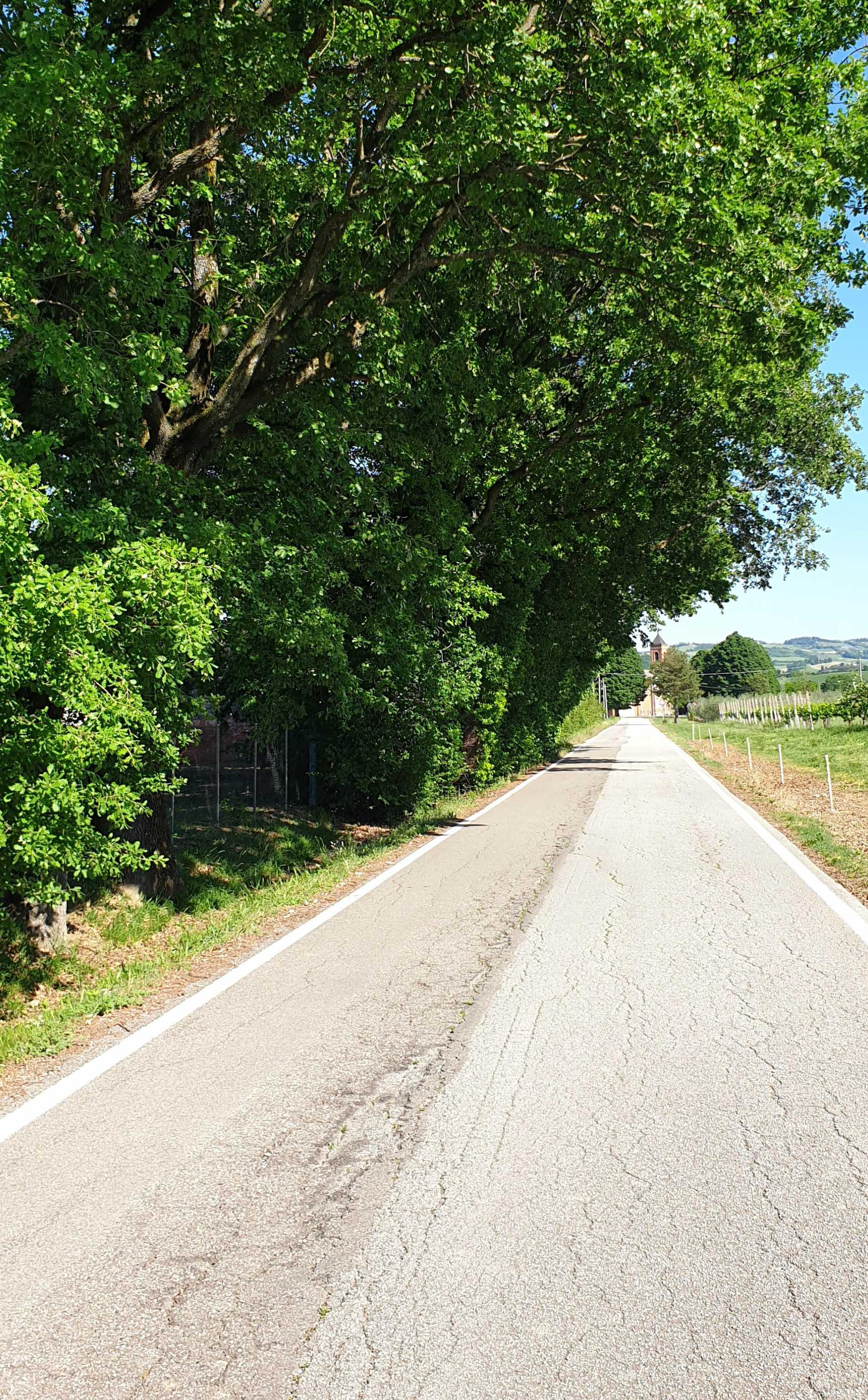 Via-Maglianella