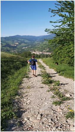 Percorsi-Margherita-Rocca-San-Casciano