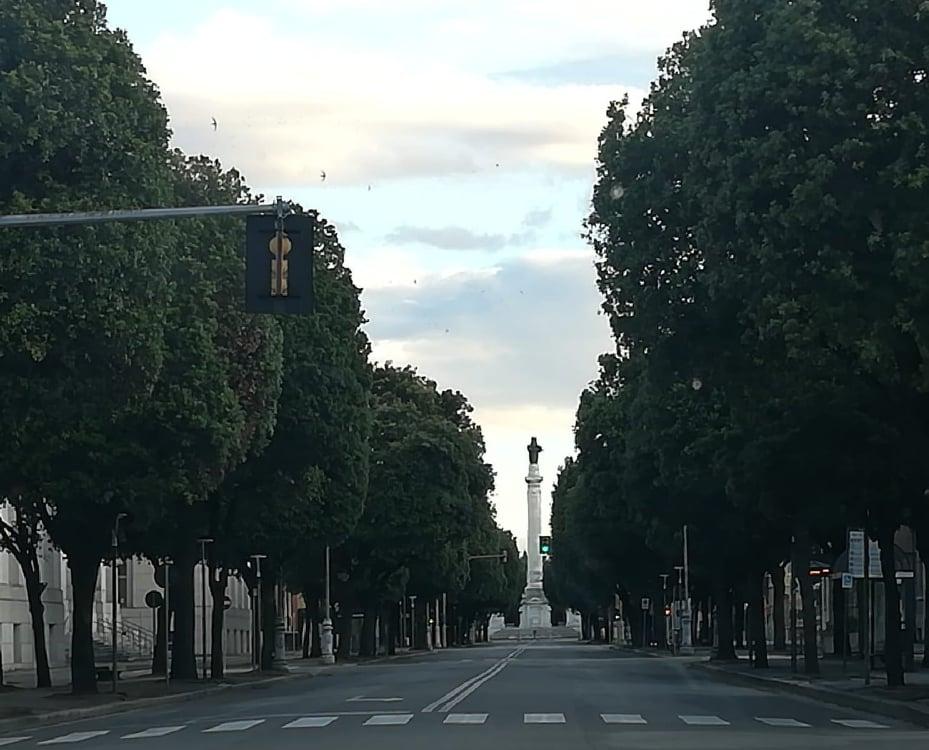 Viale-della-Libertà-foto-di-Daniele-Enoltre