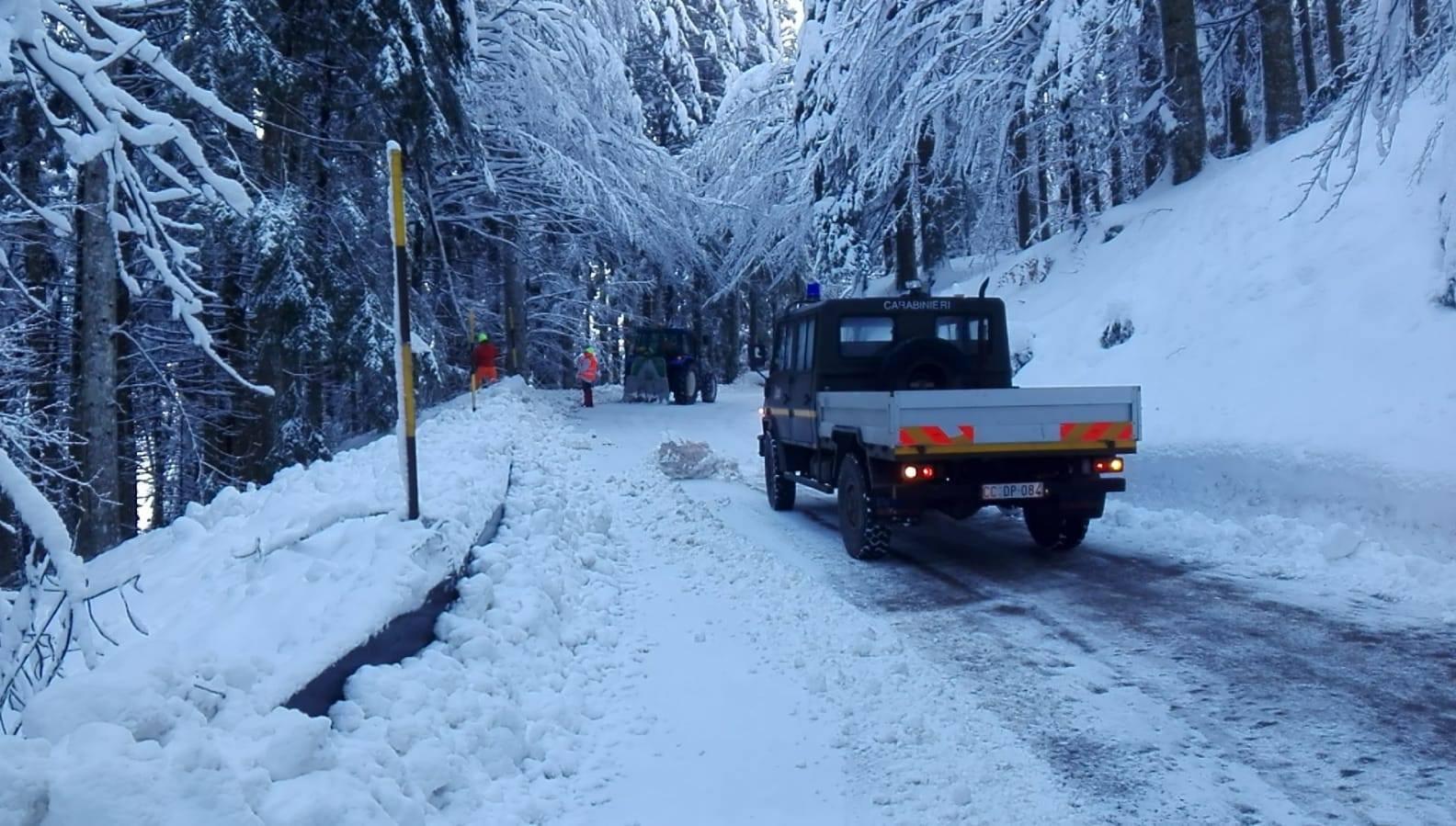 Chiusura-per-neve-e-caduta-alberi-SP4