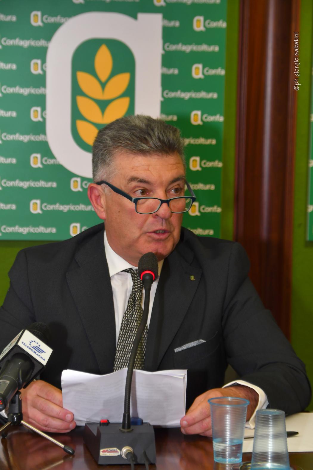 Carlo Carli
