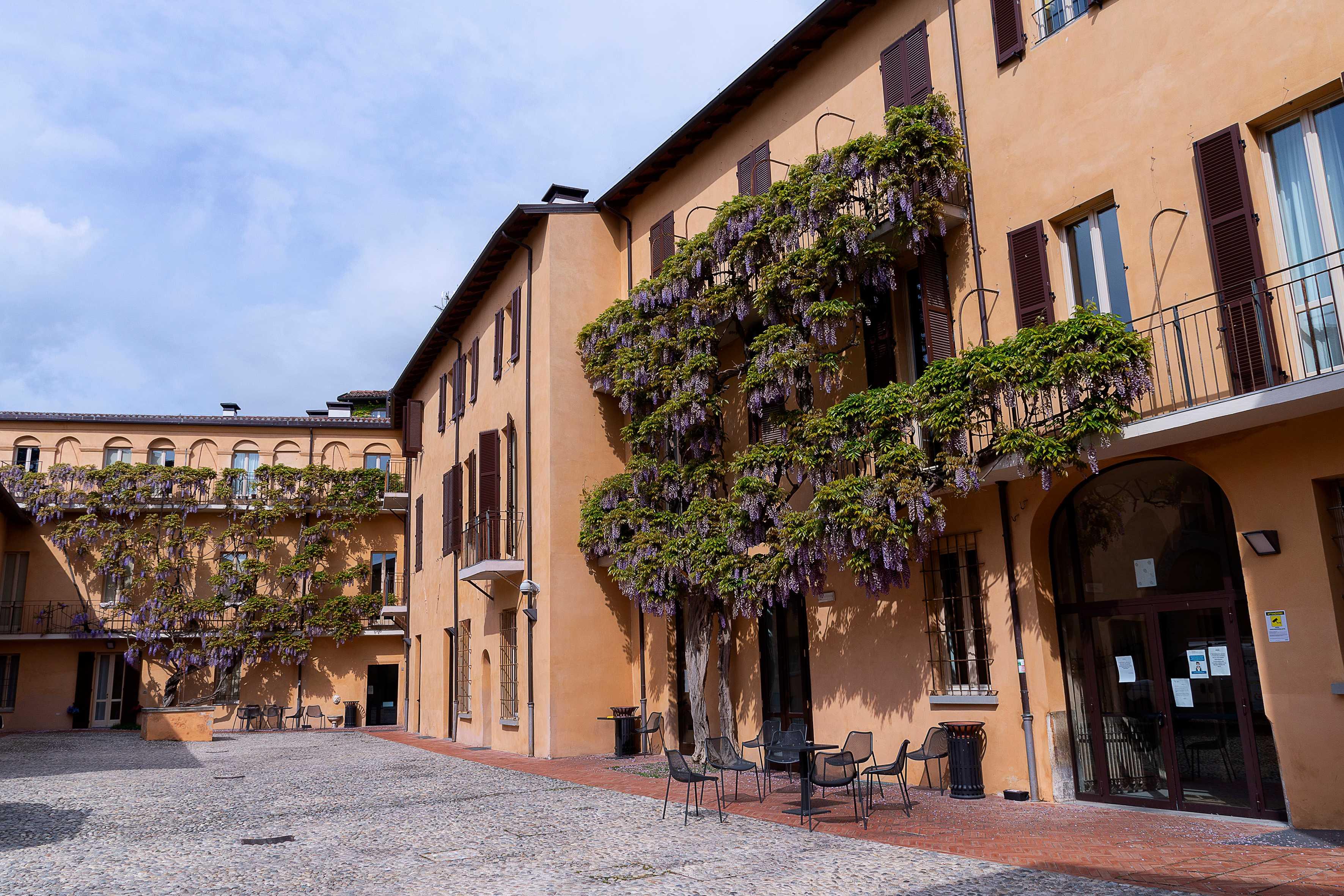 Glicini Palazzo Sassi Masini