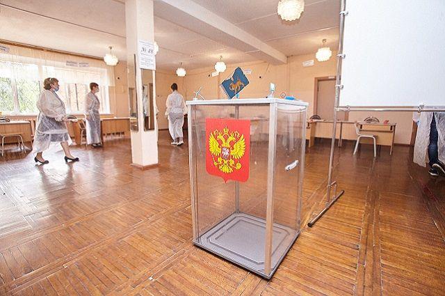 Явка на голосование по поправкам в Петербурге составила 66,8%
